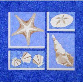 starfish167