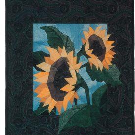 sunflower415